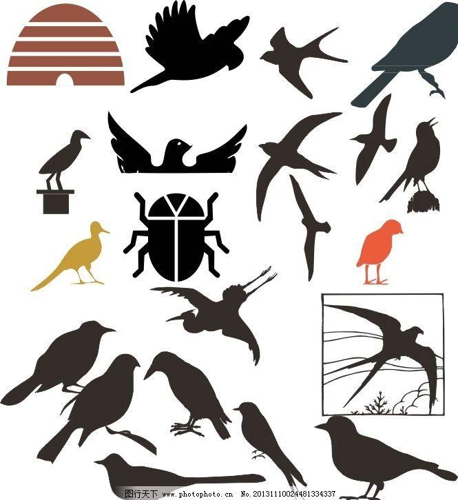 动物世界 鸟 飞鸟 昆虫