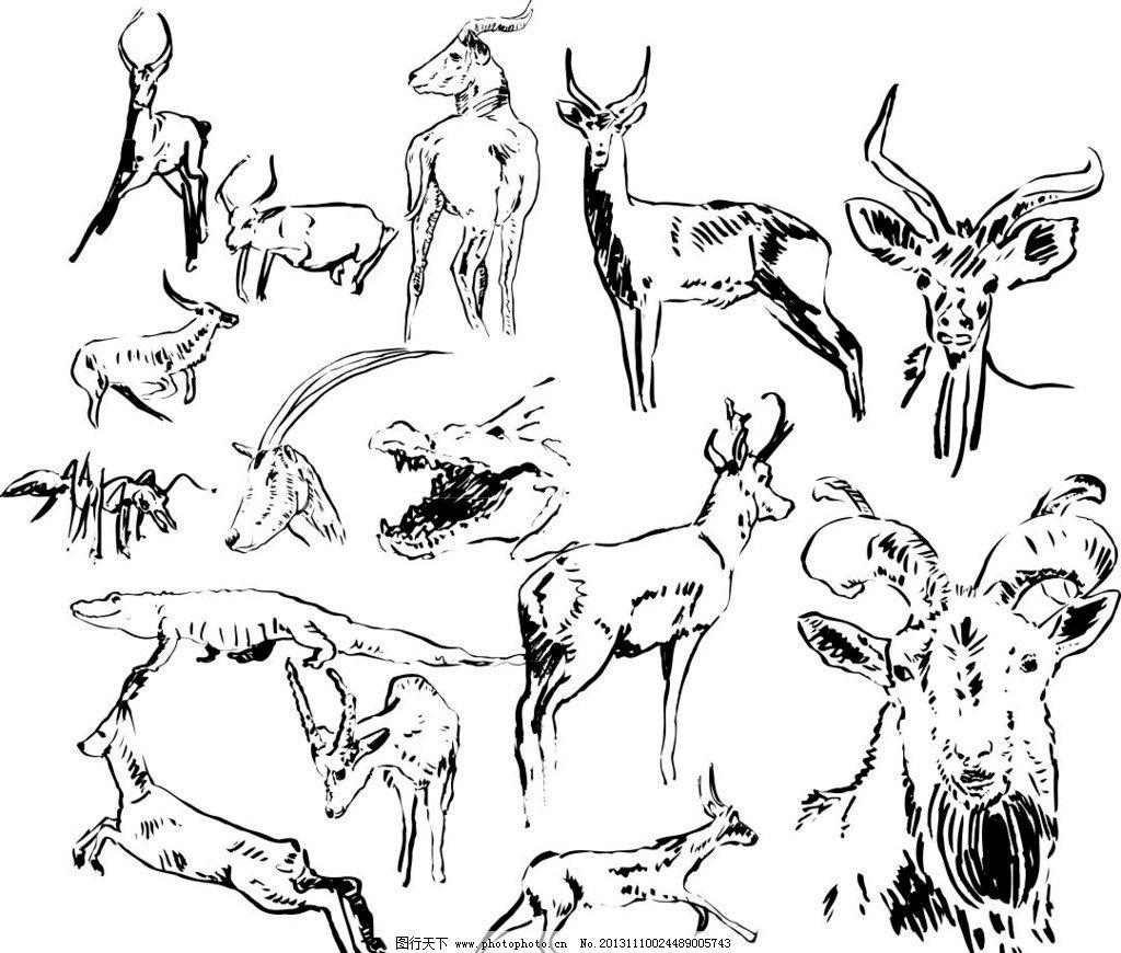 素描动物 陆地动物 山羊 样 海洋生物 海底世界 各种动物矢量素材