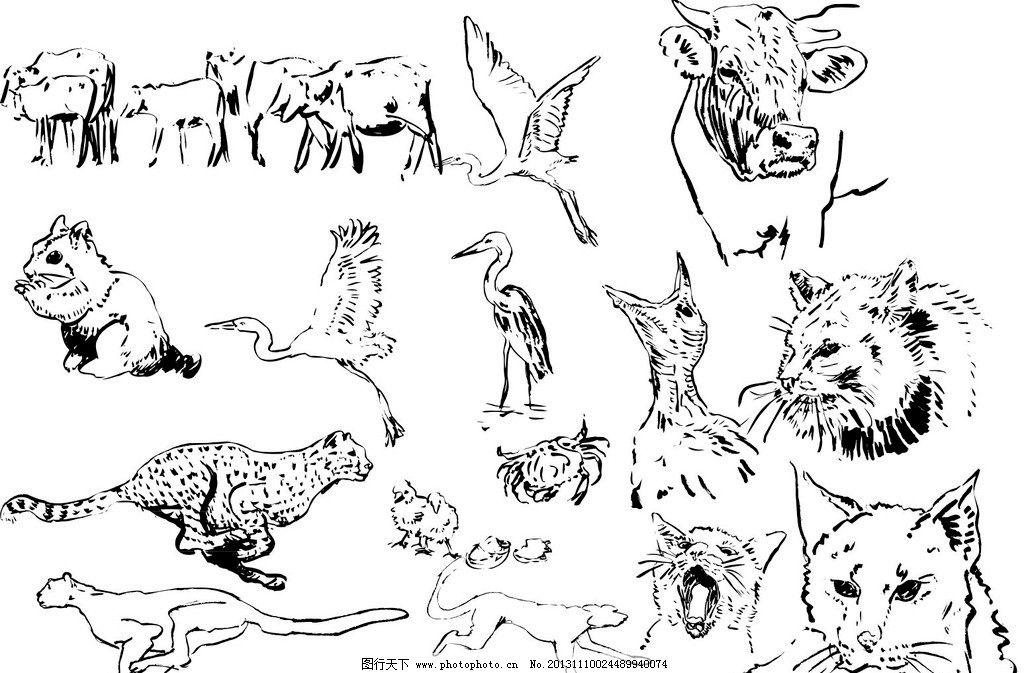 长方形简笔画动物
