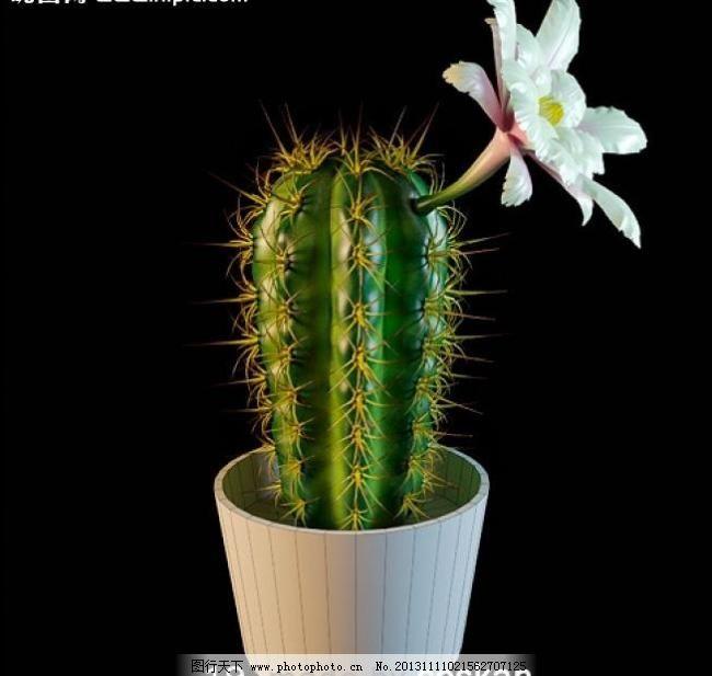 设计图库 环境设计 景观设计  3d 3d模型 3d设计模型 max 花盆 绿植