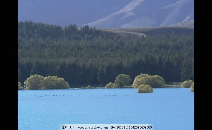 山水背景视频素材 森林背景视频素材