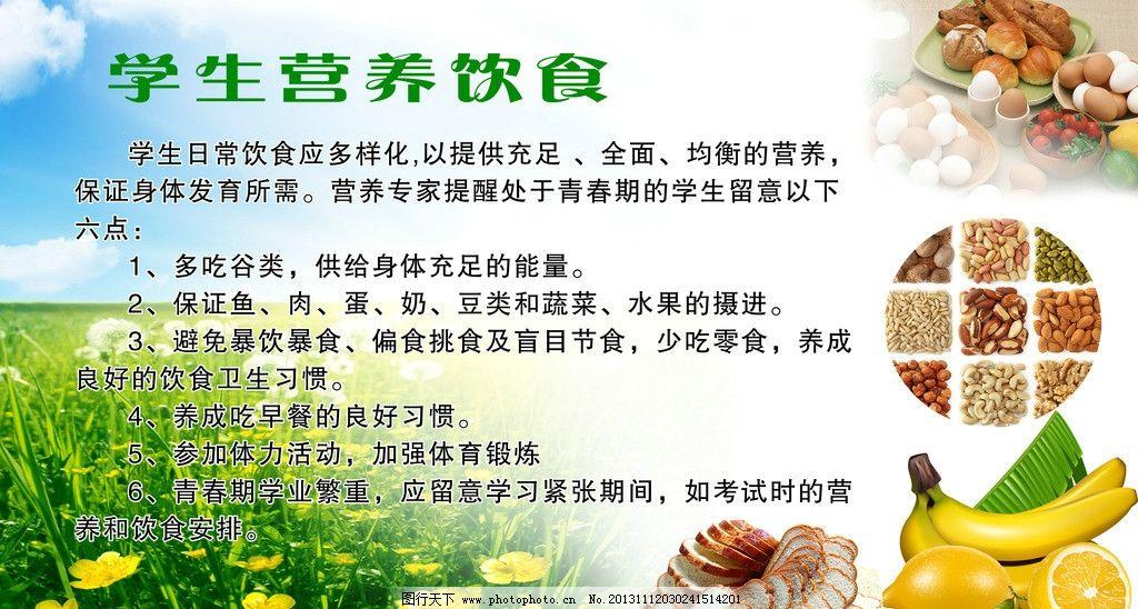营养饮食 海报 背景素材 五谷杂粮 鸡蛋 展板模板 广告设计模板 源
