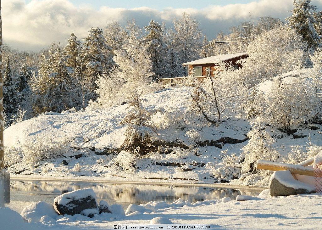 雪景 冬天 雪花 雪 下雪 大树 树林 树木 自然景观 自然 大自然 自然