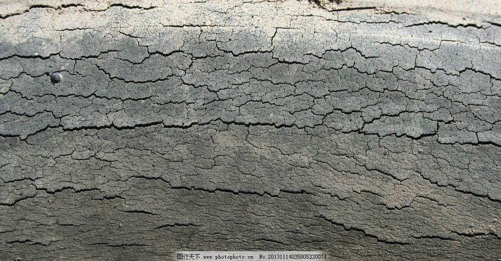 木头 树皮 树 树纹 特写树干 木材 树木树叶 生物世界 摄影 72dpi jpg