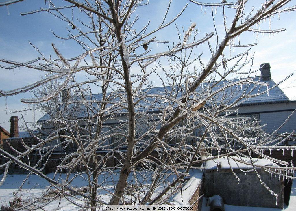 冰凌 东北 冬天 农家 过年 自然风景 自然景观 摄影