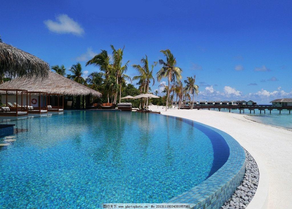 马尔代夫 游泳池 别墅 椰子树 躺椅 海岛 度假村 自然 风景