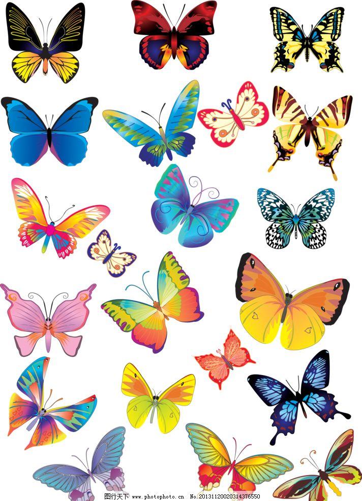 蝴蝶 手绘蝴蝶 百种蝴蝶 各种蝴蝶 简洁 移门设计 移门装饰 彩色蝴蝶