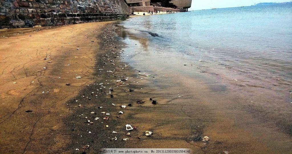 沙滩贝壳图片