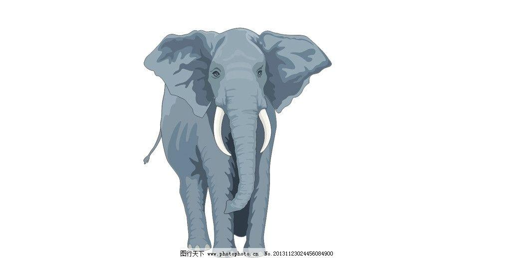 大象 矢量图图片
