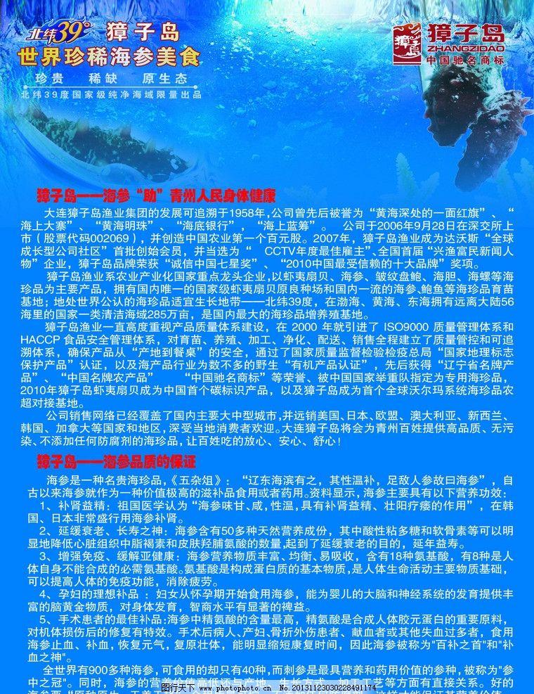 獐子岛海参宣传单彩页图片