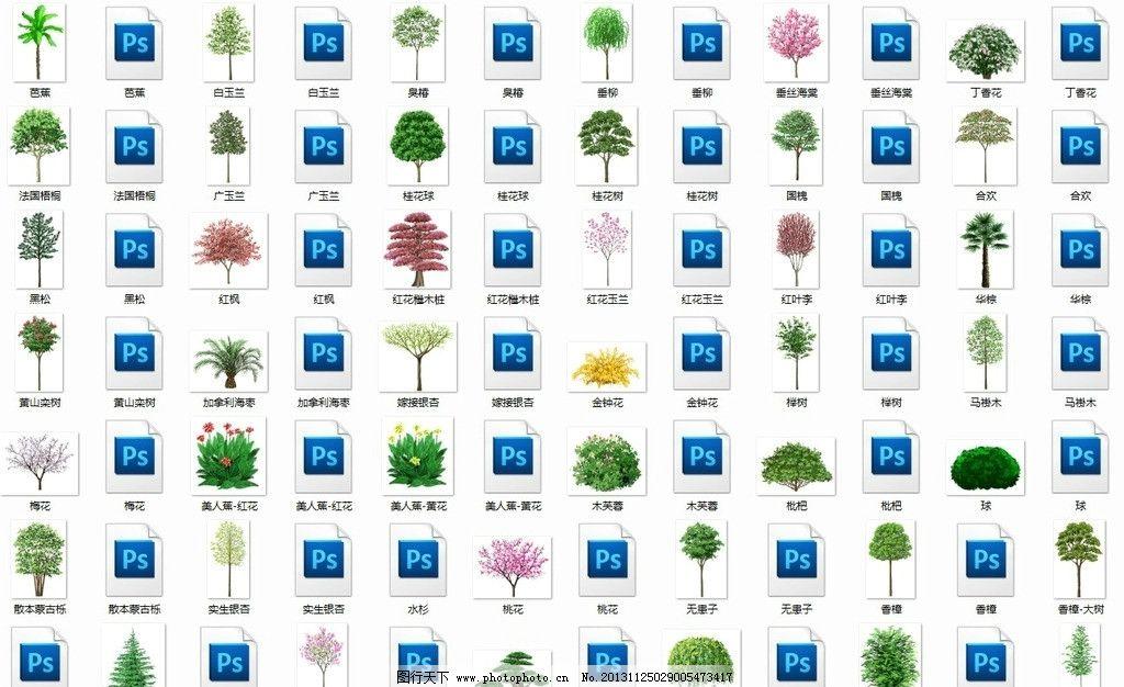 手绘树木 手绘 绿化树木 景观树 园林素材 树 效果图素材 其他设计