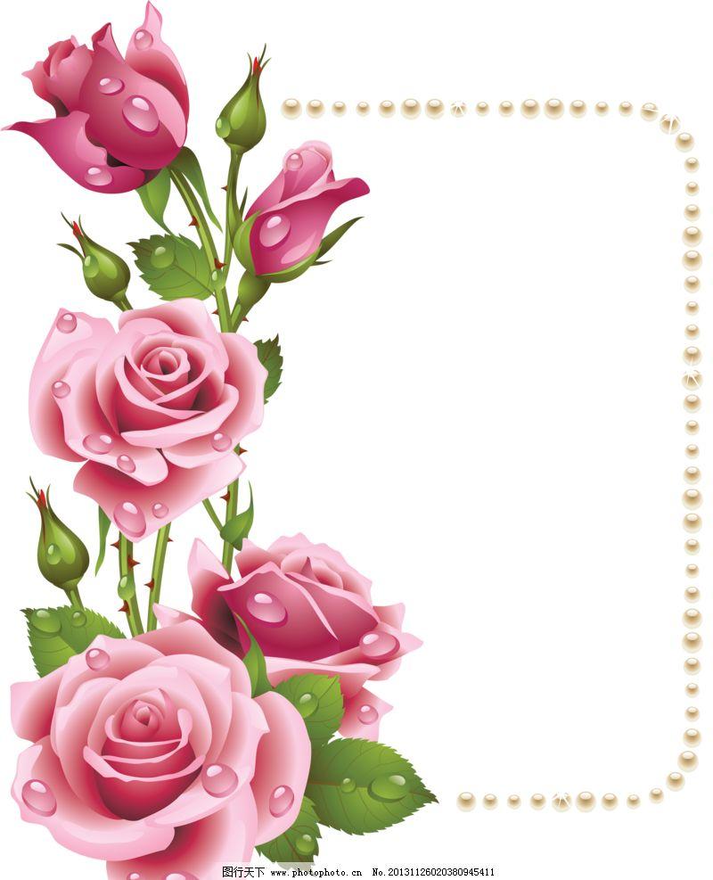 玫瑰边框 玫瑰 手绘玫瑰 玫瑰移门 玫瑰图案 玫瑰花框 玫瑰花环 花环