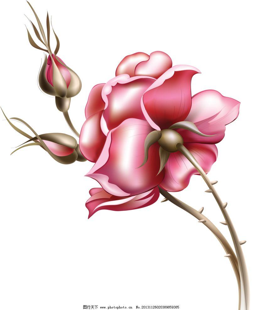 花纹 背景 花纹背景 壁纸设计 移门图案 清新花纹 玫瑰墙纸 装饰边框