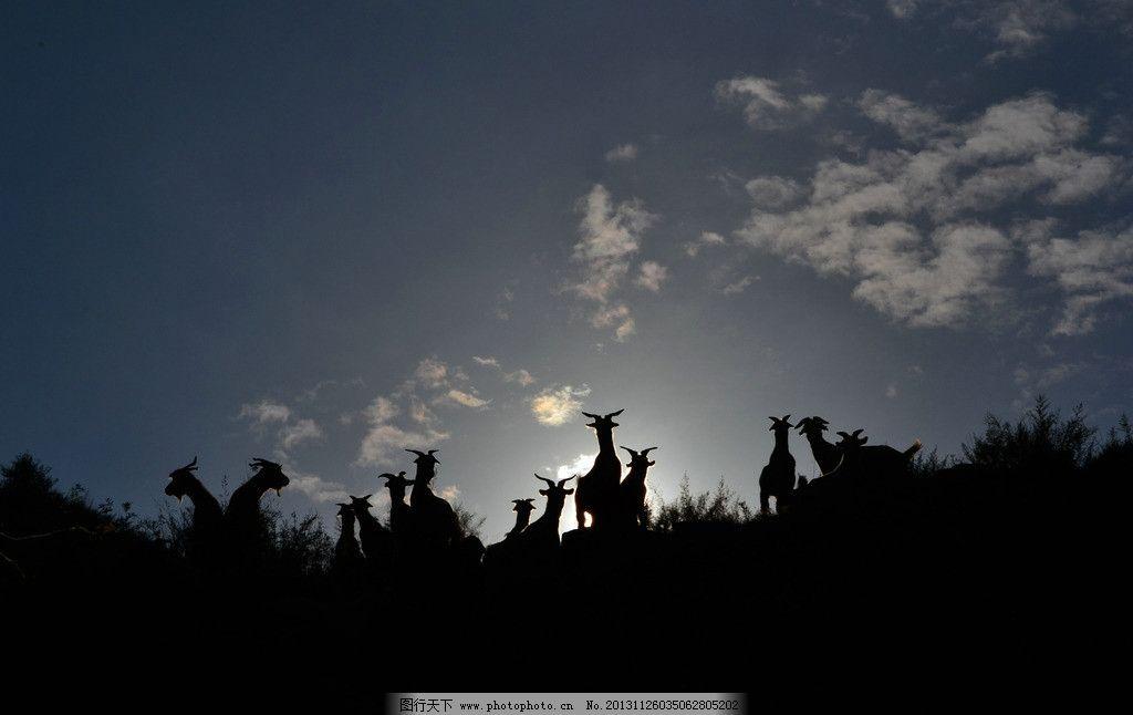 天空云朵动物图片