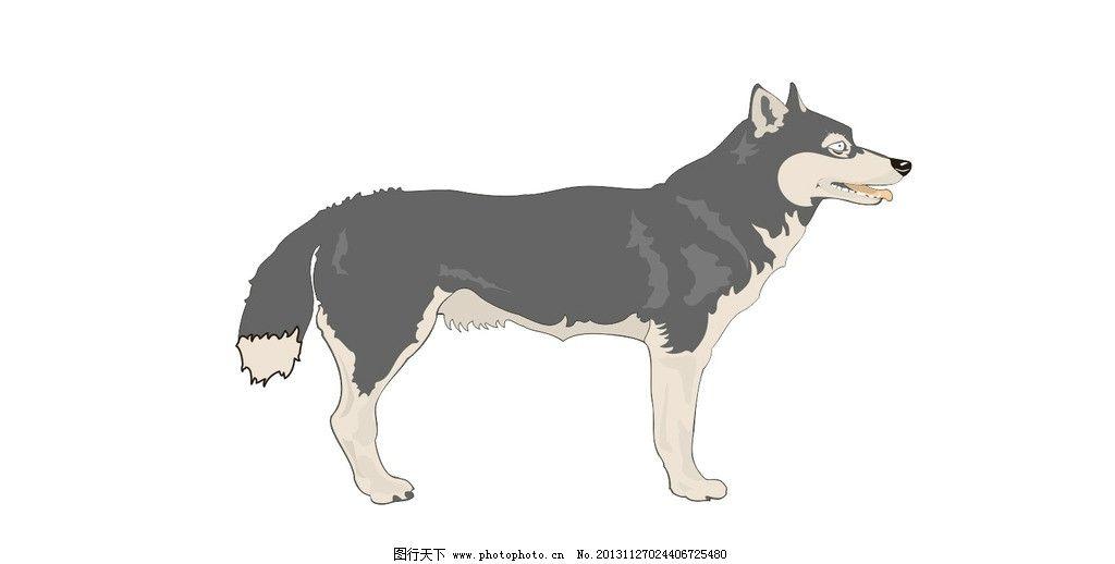 狼 狗 狼狗 狼狗矢量图 站立 野生动物 矢量图 站姿 矢量动物图 生物