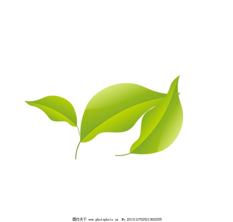 ppt 背景 壁纸 电脑桌面 发芽 绿色 绿色植物 绿叶 嫩芽 嫩叶 树叶图片