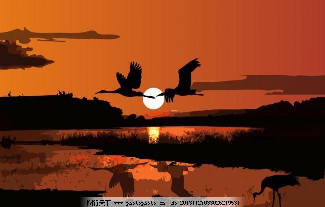 丹顶鹤剪影 白鹤 动物剪影 飞禽 飞行动物 黄昏 鸟 鸟类 丹顶鹤剪影矢