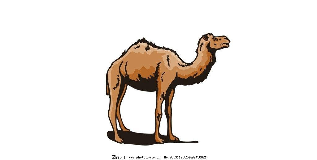 骆驼 矢量 站姿 行走 骆驼矢量图 野生动物 矢量动物图 生物世界 cdr