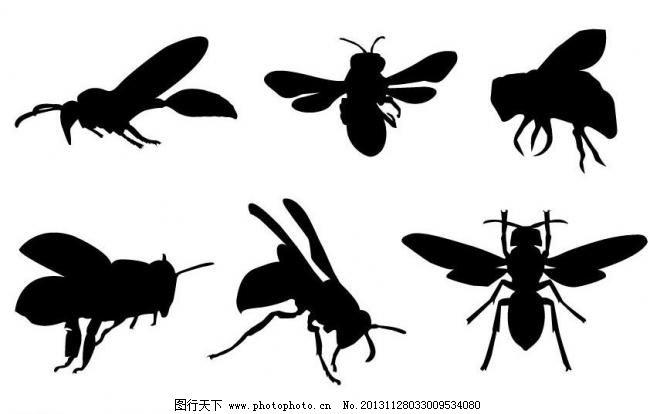 昆虫剪影 小蜜蜂 蜜蜂剪影素材 飞行 翅膀 生物世界 动物世界 黑白画
