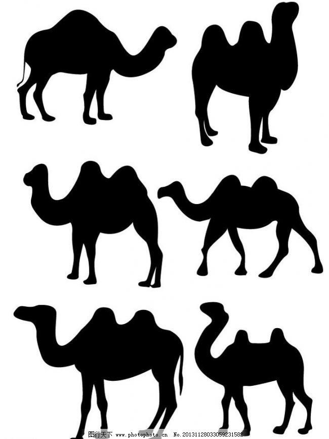 骆驼 骆驼图片免费下载 哺乳动物 动物剪影 黑白画 生物世界 野生