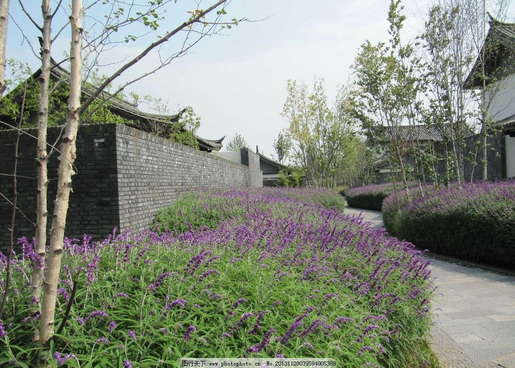 铂尔曼酒店 丽江 酒店 丽江铂尔曼酒店 实景照片 步道绿化 园林建筑