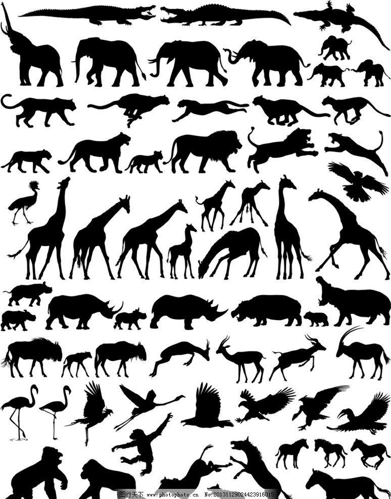 动物剪影 大象 长颈鹿 狮子 豹子 老虎 犀牛 狗熊 鳄鱼 猴子 蝴蝶