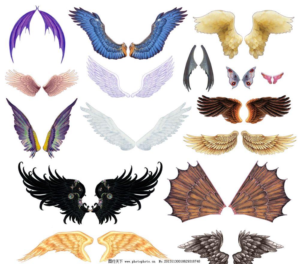 翅膀素描步骤图解
