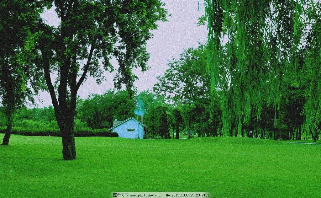 草地 大树 小屋 柳树 蓝天 园林建筑 建筑园林 摄影 96dpi jpg
