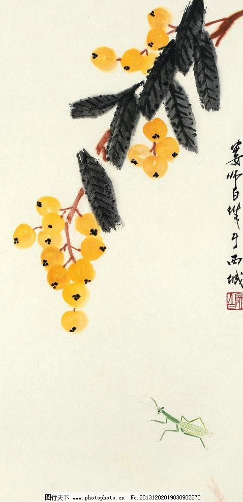 枇杷草虫 娄师白 国画 枇杷 草虫 荔枝 写意 水墨画 中国画 绘画书法