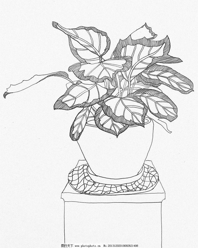 黑白装饰绘画 黑白 装饰绘画 花草 叶子 花草装饰画 黑白装饰画 绘画