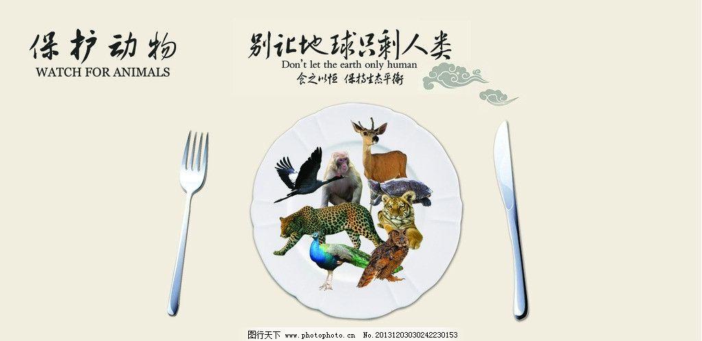 保护动物公益图片