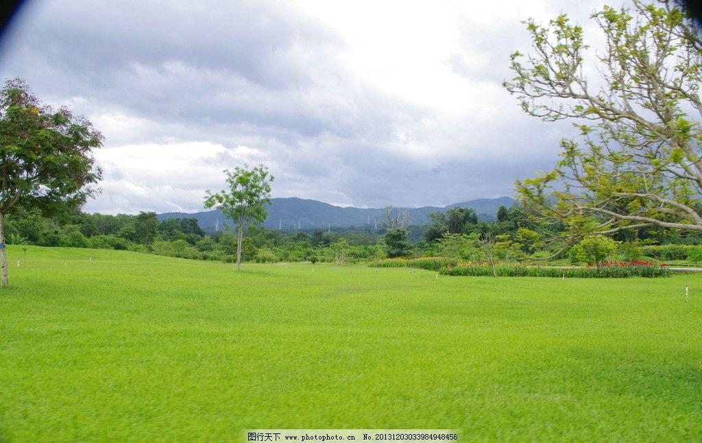 西双版纳热带植物园图片_国内旅游_旅游摄影_图行天下