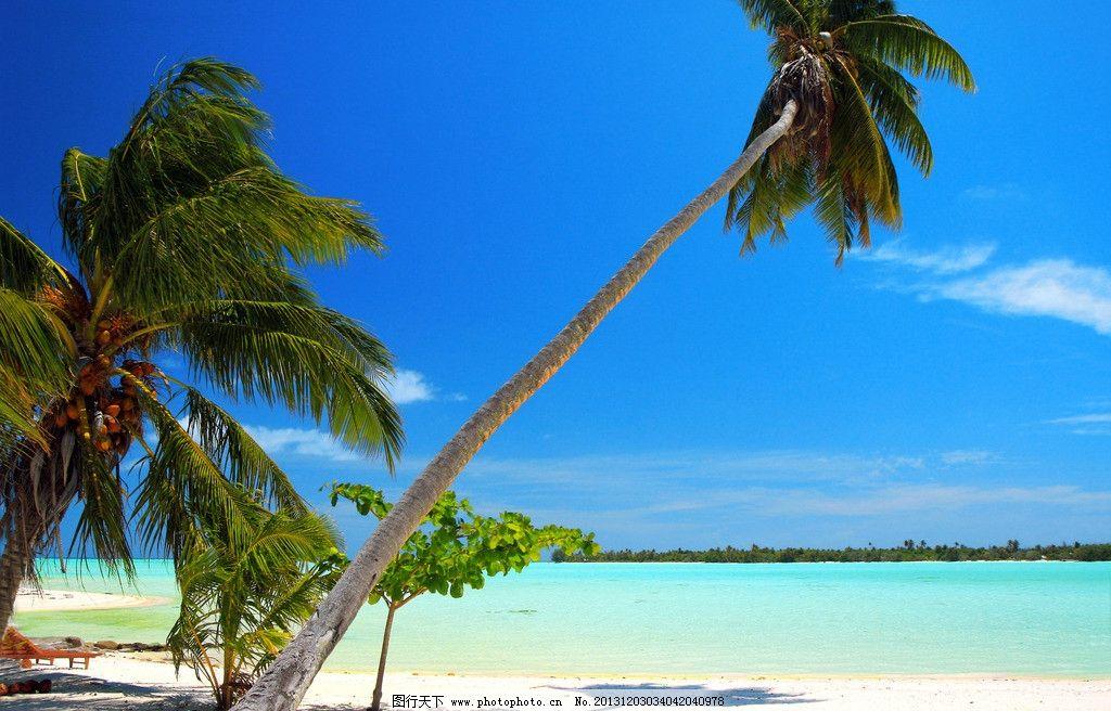 马尔代夫风景 马尔代夫 海岛 椰子树 蓝天 白云 旅游 自然 风景 风光 风景如画 梦幻 唯美 小岛 海滩 沙滩 海洋 大海 海景 蓝色 蔚蓝 清澈 天堂 仙境 马尔代夫风景系列二 国外旅游 旅游摄影 摄影 72DPI JPG