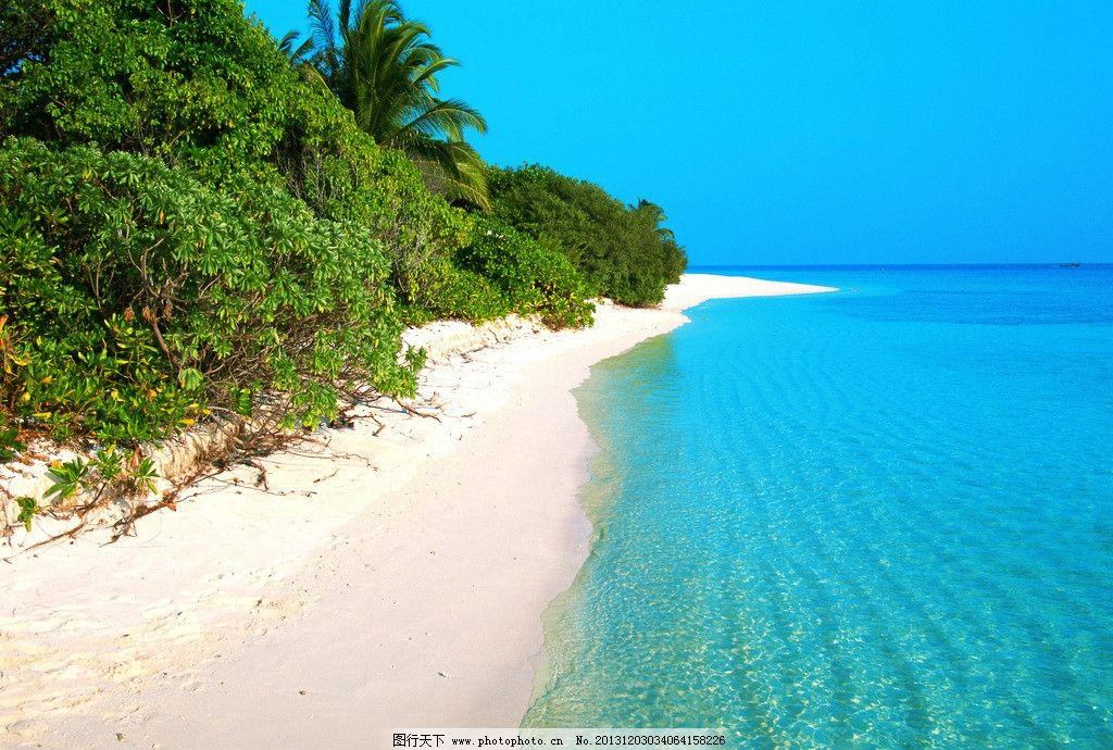 马尔代夫风景 马尔代夫 海岛 椰子树 蓝天 白云 旅游 自然 风景 风光