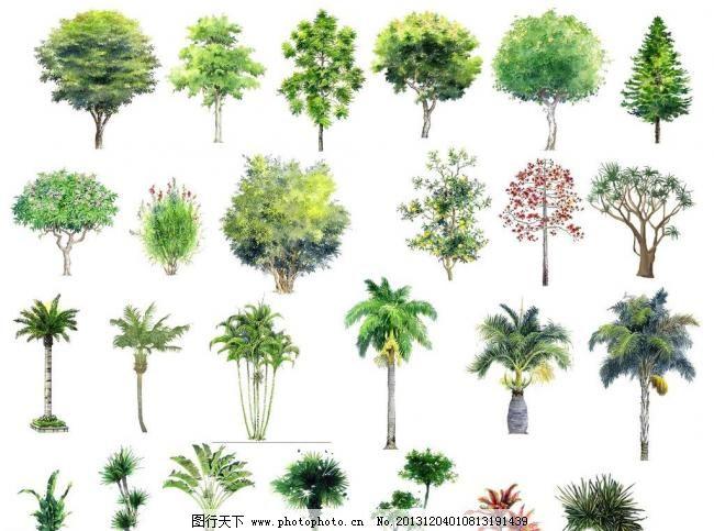 手绘树素材图片