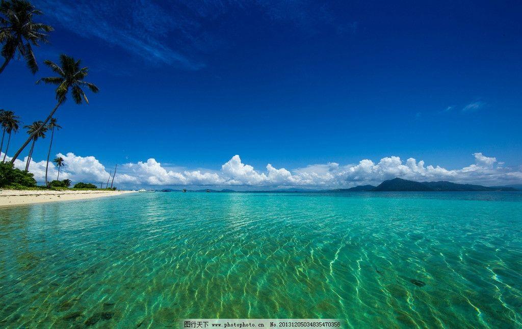 大海 椰子树