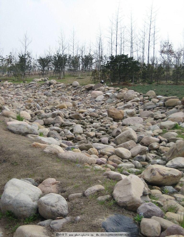 石头 石堆 绿化 植物 天空 白塘植物园 园林建筑 建筑园林 摄影 180