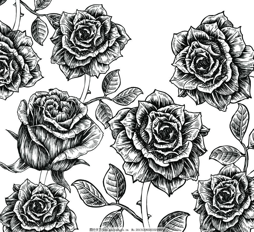 花 素描花 素描 线条玫瑰花 黑白玫瑰花 花纹 花边花纹 底纹边框 设计