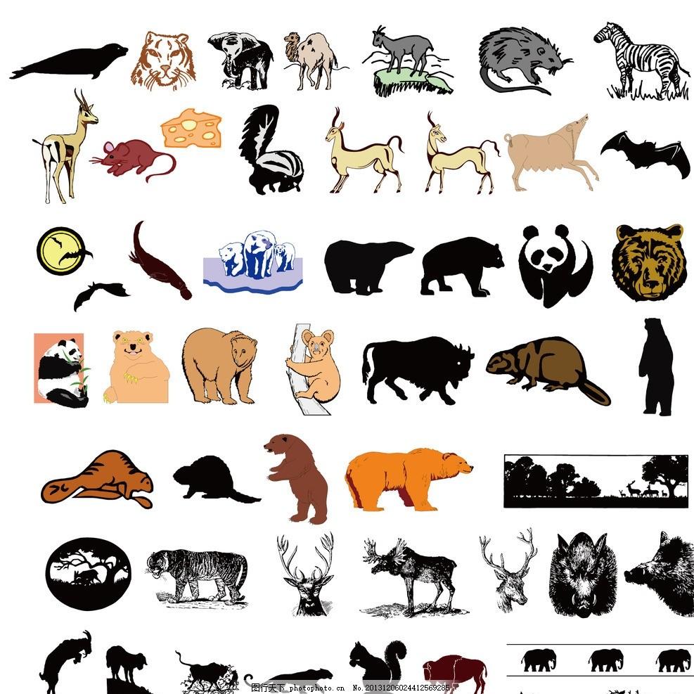 熊猫狗熊麋鹿森林动物
