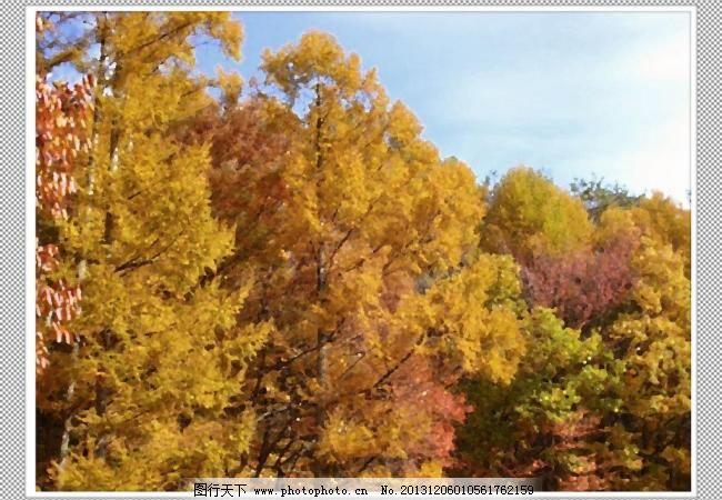 枫树 背景 边框 草原 大树 大厅画 风景 风景画 风景油画 景色