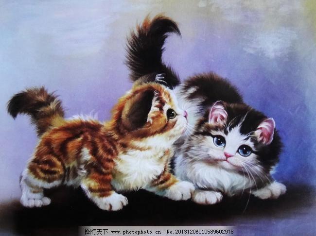 小猫图片免费下载 72dpi jpg 绘画书法 可爱 猫 设计 文化艺术 小猫