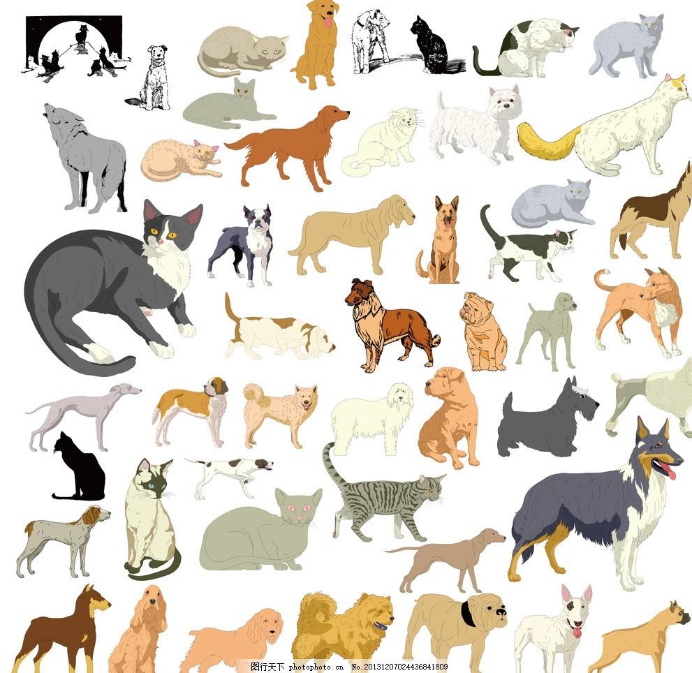 各品种狗猫姿态图案 可爱生活 情趣 休闲 剪影 表情 动物图形元素