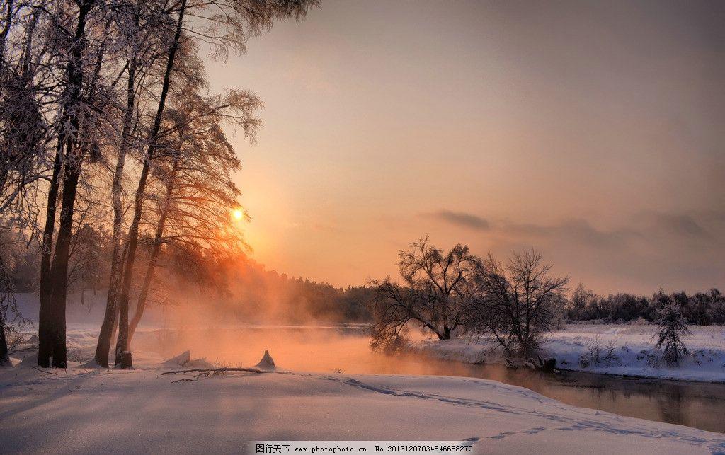 雪景 夕陽 冬天 雪 下雪 大樹 樹林 樹木 自然景觀 大自然 自然風景