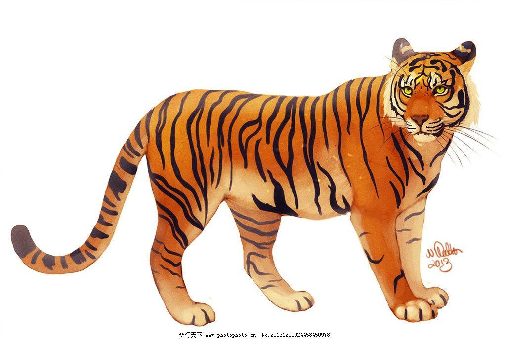 老虎爪子素描画法步骤