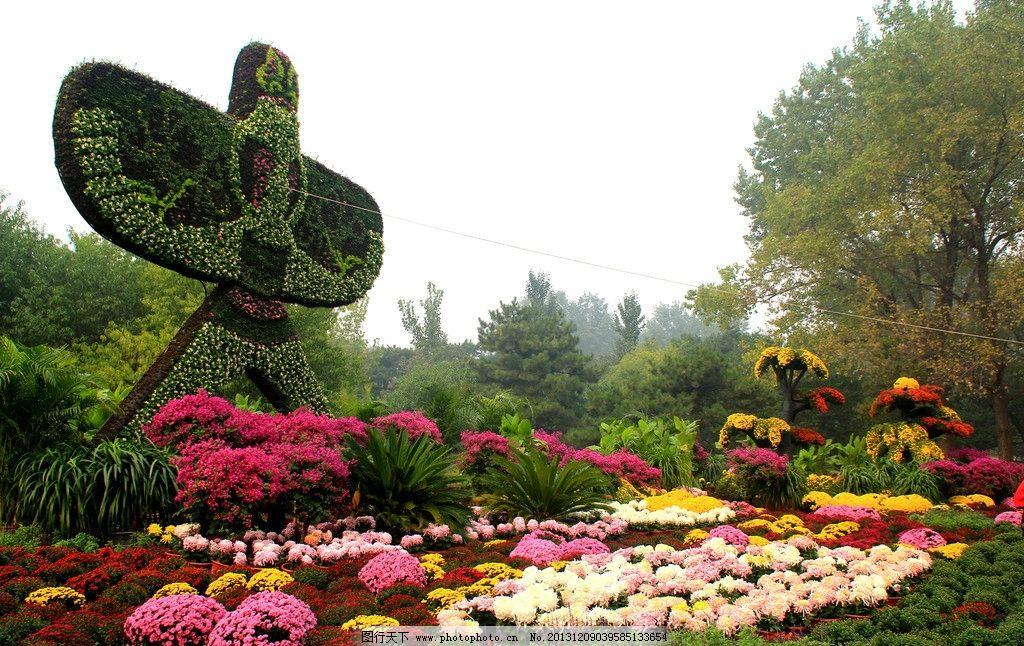 北京植物园秋色 植物园 秋天 花坛 草雕风筝 菊花 绿树 北京植物园