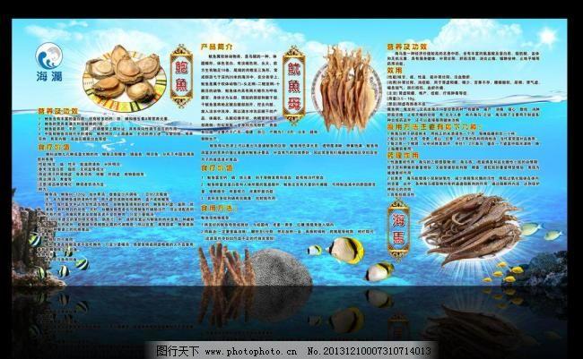 海马 海鲜      精美 鲍鱼鱿鱼母海马