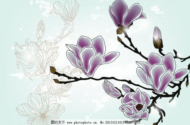 家居装饰画 玉兰花素材
