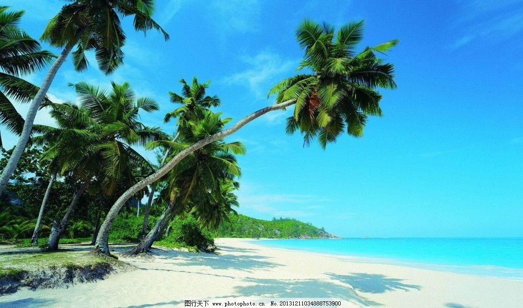 海岛风情 沙滩 海边 椰树 蓝天 海滩 海水 自然风景 自然景观 摄影 96