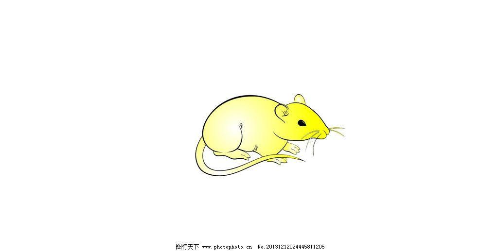 生肖 鼠 cdr 金鼠 卡通 野生动物 生物世界 矢量 cdr