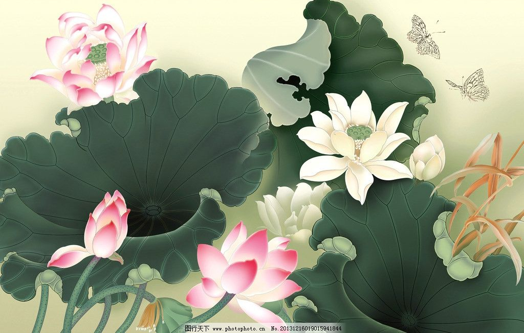 荷花双蝶 美术 中国画 工笔画 花鸟画 荷花 蝴蝶 国画艺术 绘画书法